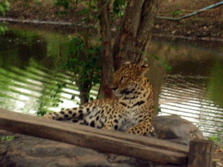 Kanchanaburi Erlebnispark