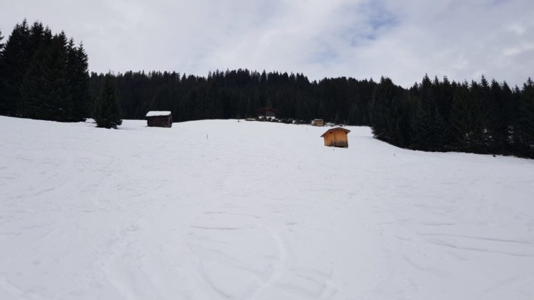 Galtjoch