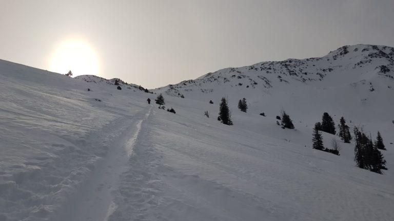 Schneegrubenspitze