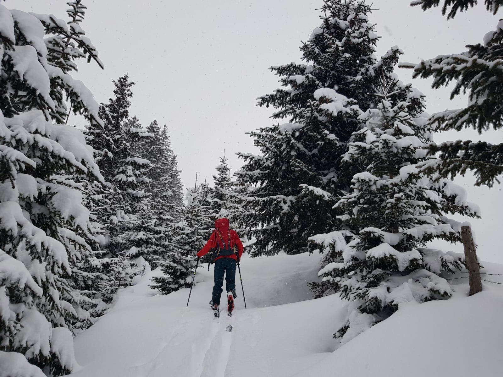 Eggalm Bergstation 2.005 m (Skitour)